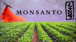 Acheter ou Vendre l'action Monsanto ?