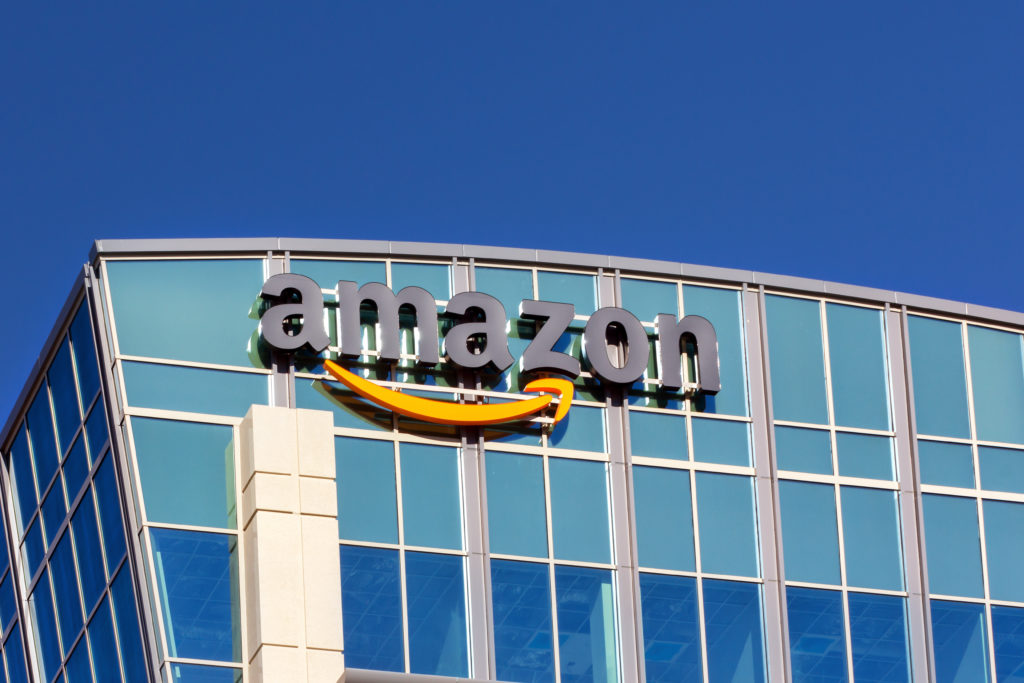 Bilan de l'action Amazon